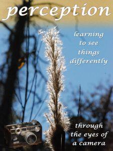 Perception Cover